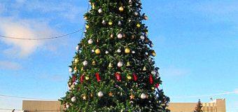 Торжественное открытие главной новогодней ёлки в районе