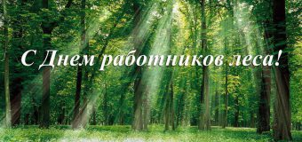 Поздравление главы администрации района с Днем работников леса