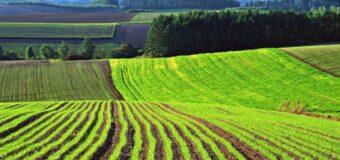 Перечень земельных участков сельскохозяйственного назначения по состоянию на 12.05.2021