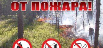 МЧС ДНР напоминает, Ваша безопасность – в ваших руках!