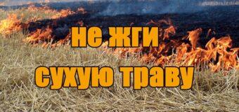 О запрете сжигания сухой растительности!