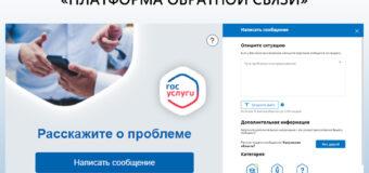 Анастасия Селиванова пояснила действия в случае отсутствия письма-активатора с портала «Госуслуги»